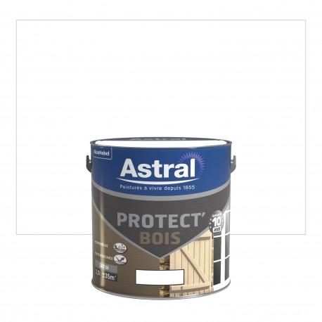 Peinture Protect Bois Astral