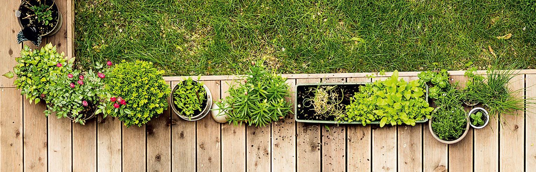 Environnement-Mobilier - Décoration - Cuisson-Mobilier de Jardin